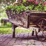 ¿Cómo calcular la tasa de abandono de su carrito?